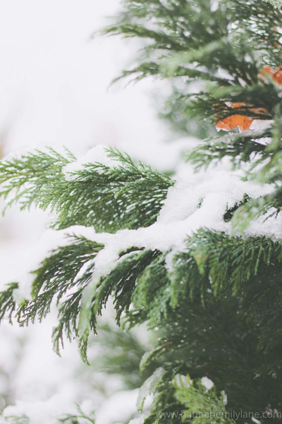 How To Self Care in Winter | www.hannahemilylane.com