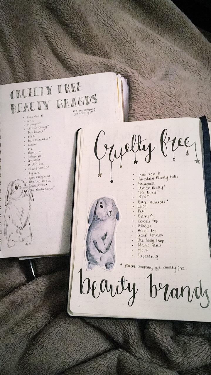 2016 vs 2017 Bullet Journal | www.hannahemilylane.com