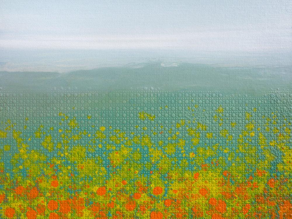 Flower Field, 2017