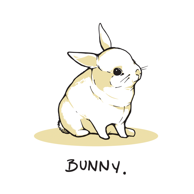 Bunny-Web.png