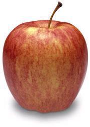 gala_apples.jpg