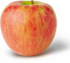 honeycrisp_apple.jpg