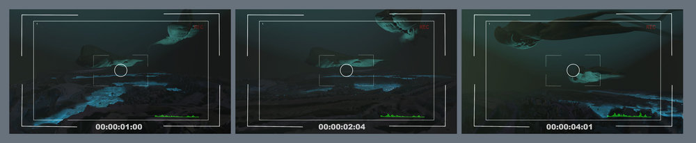 security-camera.jpg