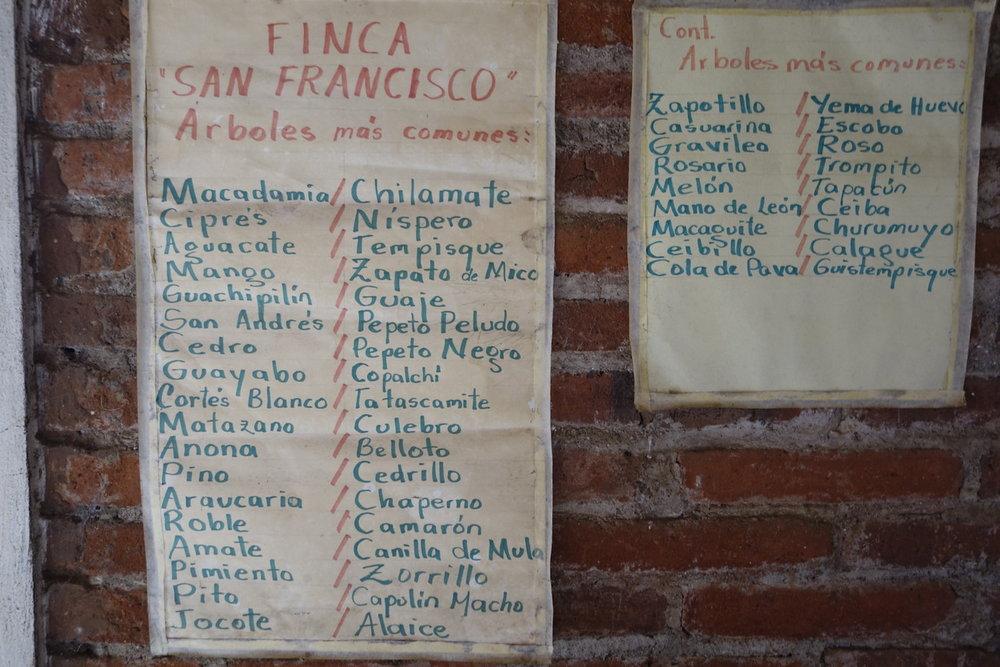 EL Salvador - La Independencia_24.jpg