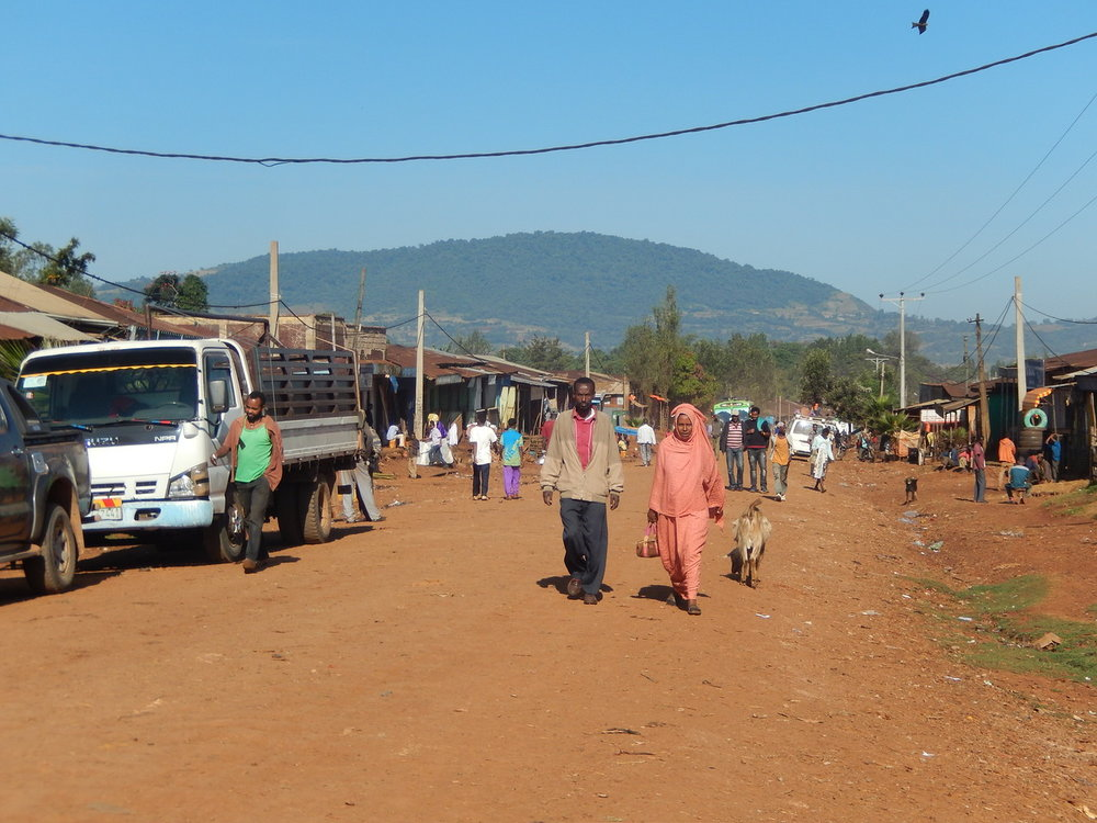 ethiopia-biftu-gudina-1.jpg
