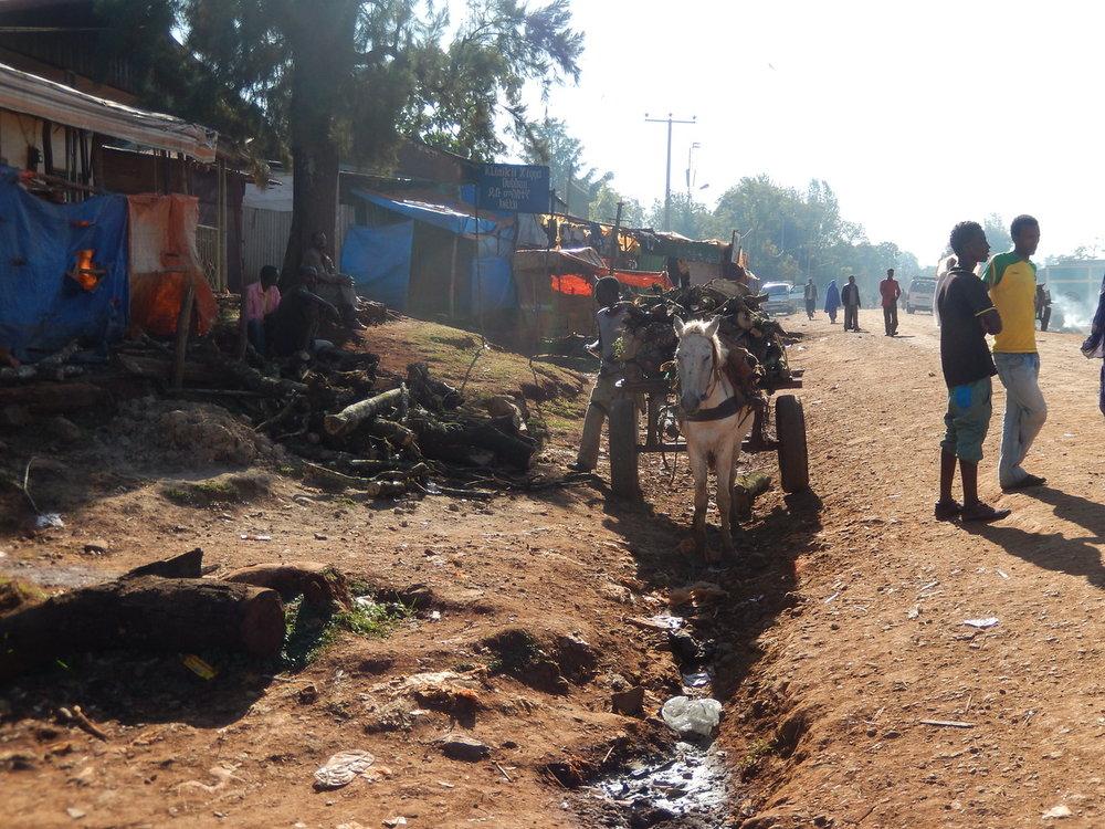 ethiopia-biftu-gudina-3.jpg
