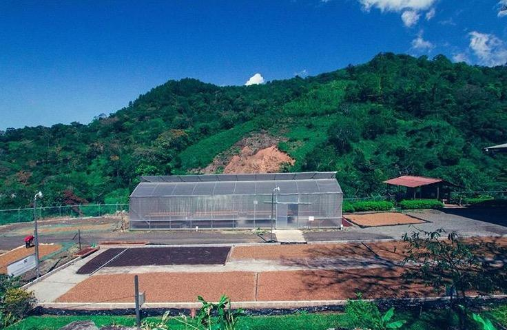 Costa_Rica_-_Nacientes_7.jpg
