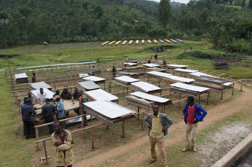 ethiopia-bokasso-6.jpg
