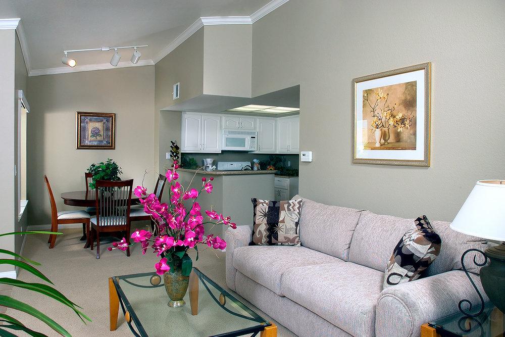 Condo, Living Room