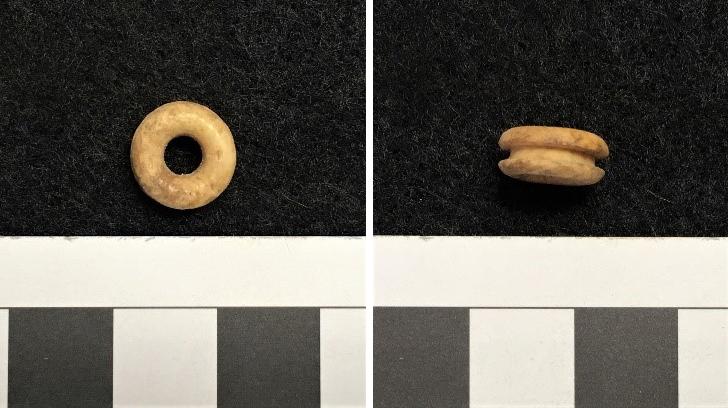 figure 1. bone grommet from cloverfields dining room area.