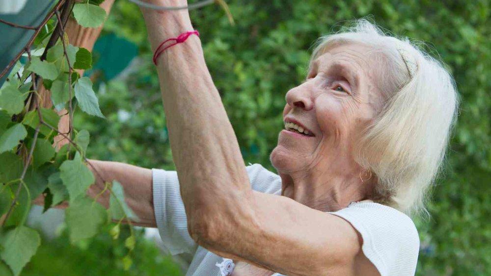older woman gardening.jpg