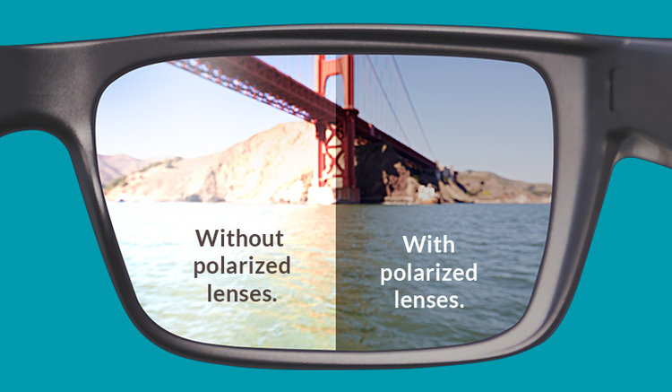 Polarized versus not-polarized lenses