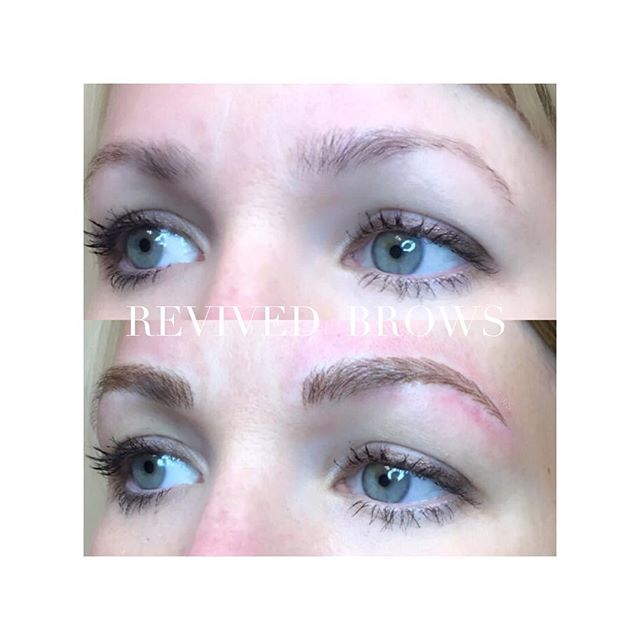Holy Brows!! 🙌🏽 #revivedbrows #revivedaesthetics #revivedbrowsbyjenv #microbladingnurse #nurselife #microblading #eyebrows #brows #transformation #microbladingeyebrows #micropigmentation #pmubrows #eyedesign #eyedesignny beauty #art #browart #permanentmakeup #lovemyjob #semipermanentmakeup #browsfordays #browshaping #pmu #esthetics #browsfordays #pmuartist #greenvillemicroblading