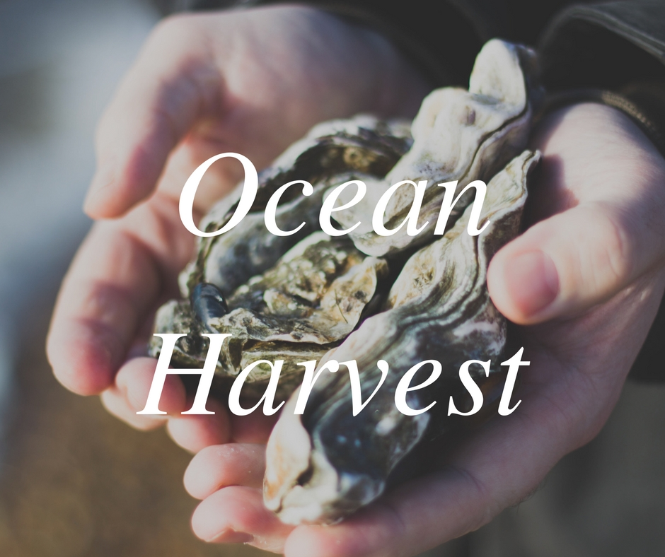 Ocean Harvest Expeditions