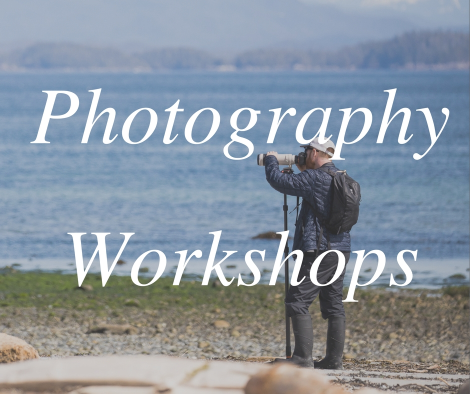 Photography Workshops - Vancouver Island