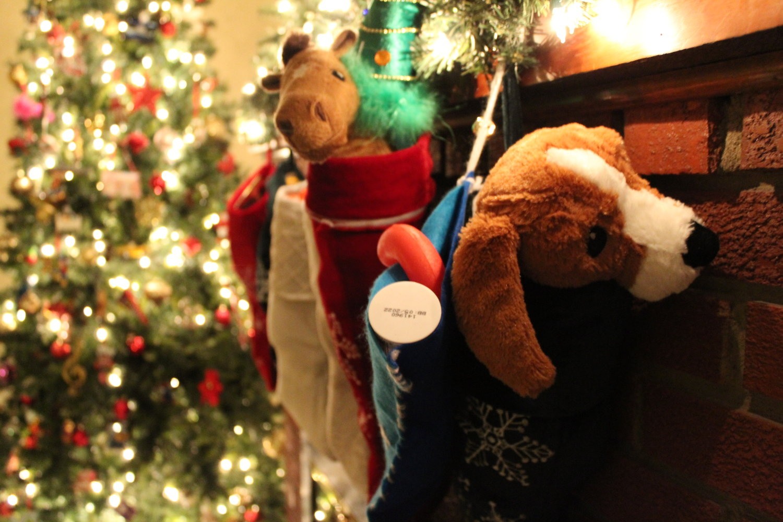 Kids Christmas Play — Bridgeway KC