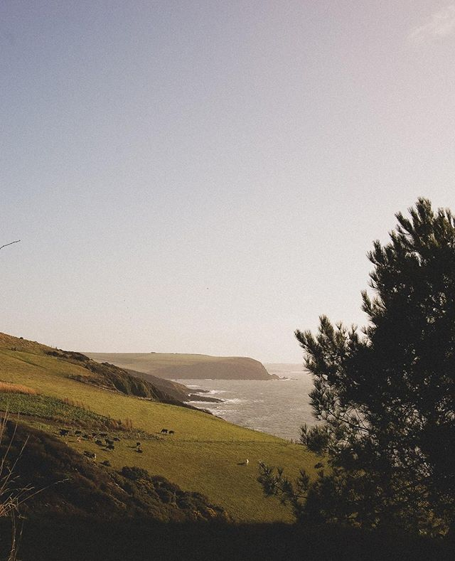 The stunning Devon coastline. Bit of inspiration for these cold winter days. Occasionally the winter will produce a morning like this we one from last week! . . . . . . . #devon #landscape #inspiration