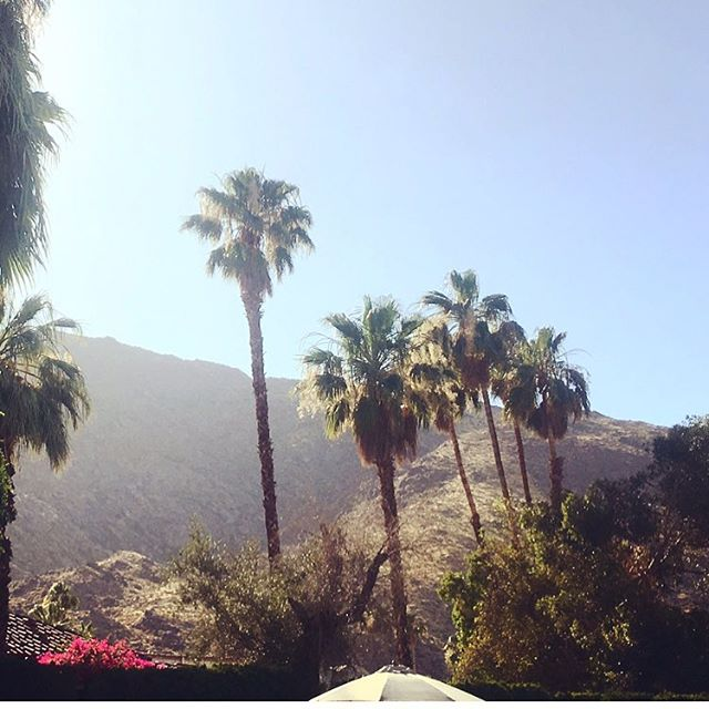 Long weekends in The Desert are always what I need