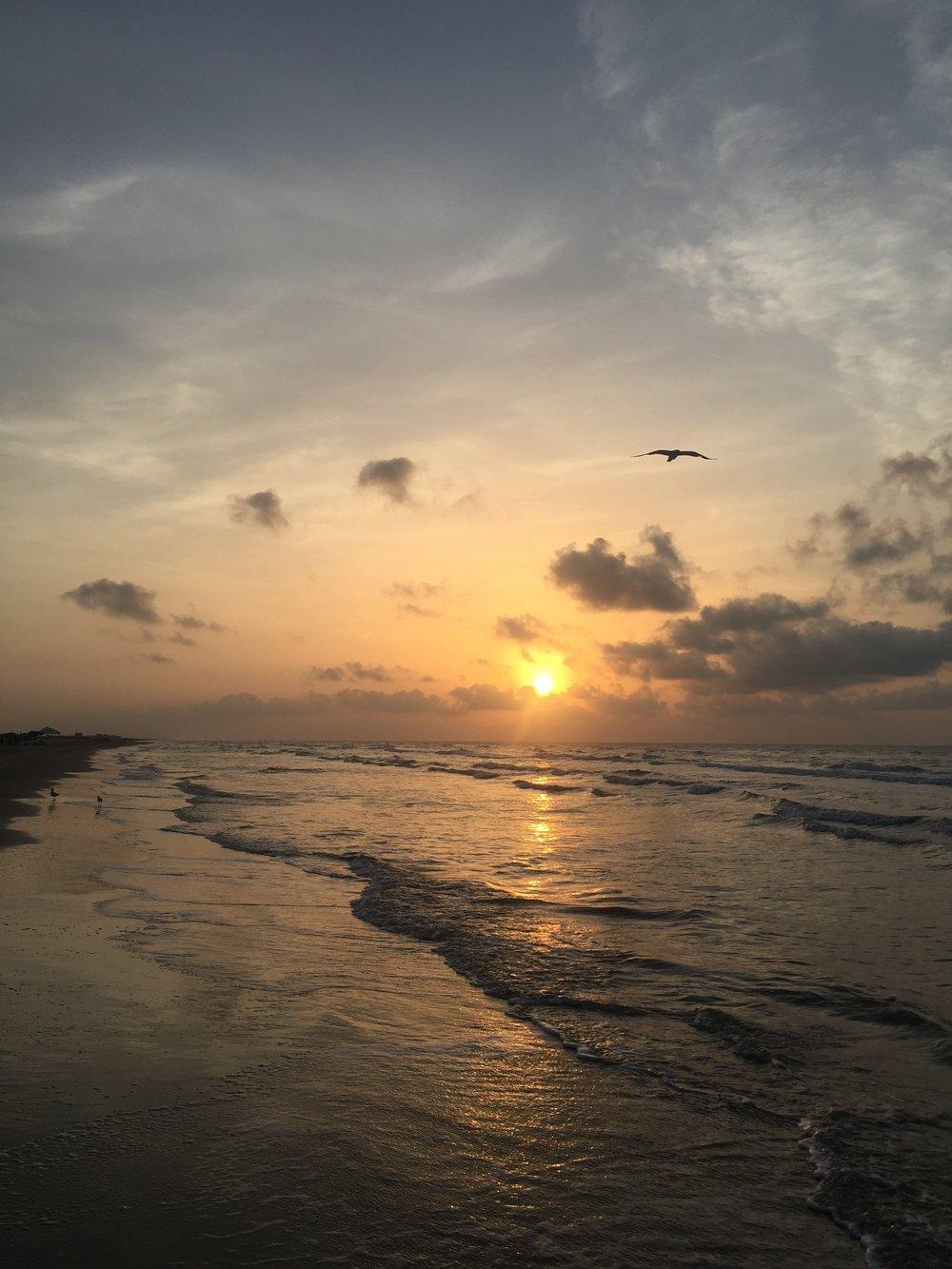 ramble and rove - texas blogger - lifestyle blogger - beach - texas beach - surfside beach - galveston beach - Texas gulf - seagull - beach sunrise - Gulf of Mexico