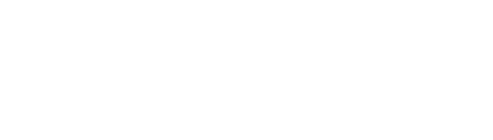 Lifeline_Darling Downs  Sth Wst Qld Ltd_rgb300.png