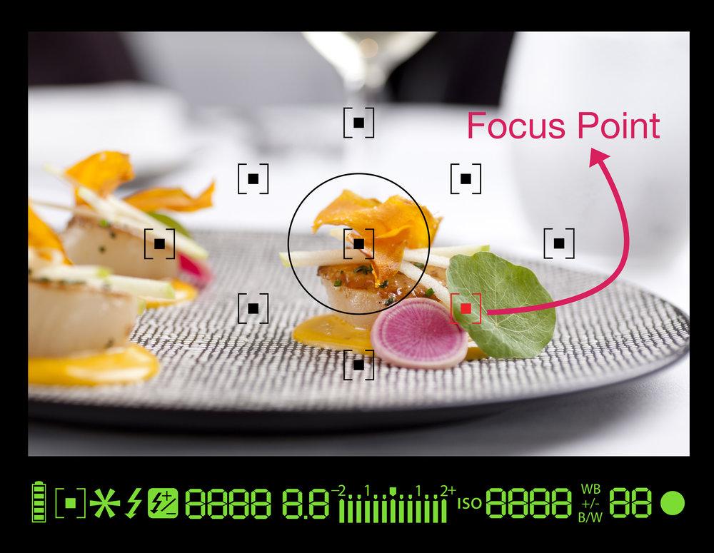 FOCUS POINT1.jpg