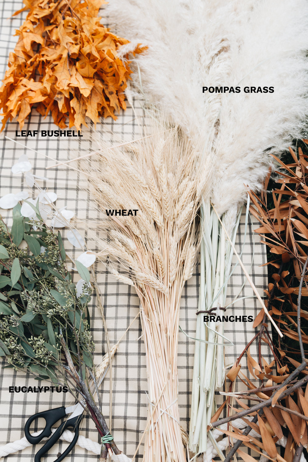 LEAF BUSHEL:  Ralphs Grocery  // POMPAS GRASS:  I chopped mine on the side of the road but here's a link to order online  // EUCALYPTUS:  Trader Joes  // WHEAT:  Marshalls  or  Online Here  // BRANCHES: I chopped mine off a dead tree in my yard, so you could do the same or here are some  branches online