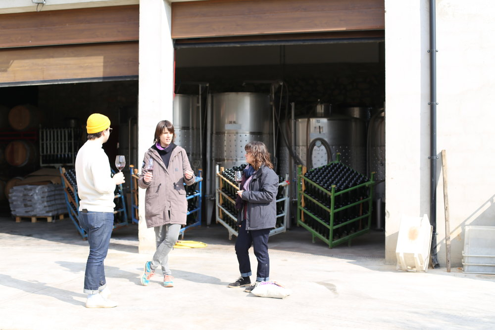 Tasting natural wine from the tank.