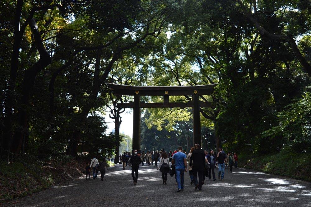 Ιαπωνικός γάμος - πύλες torii