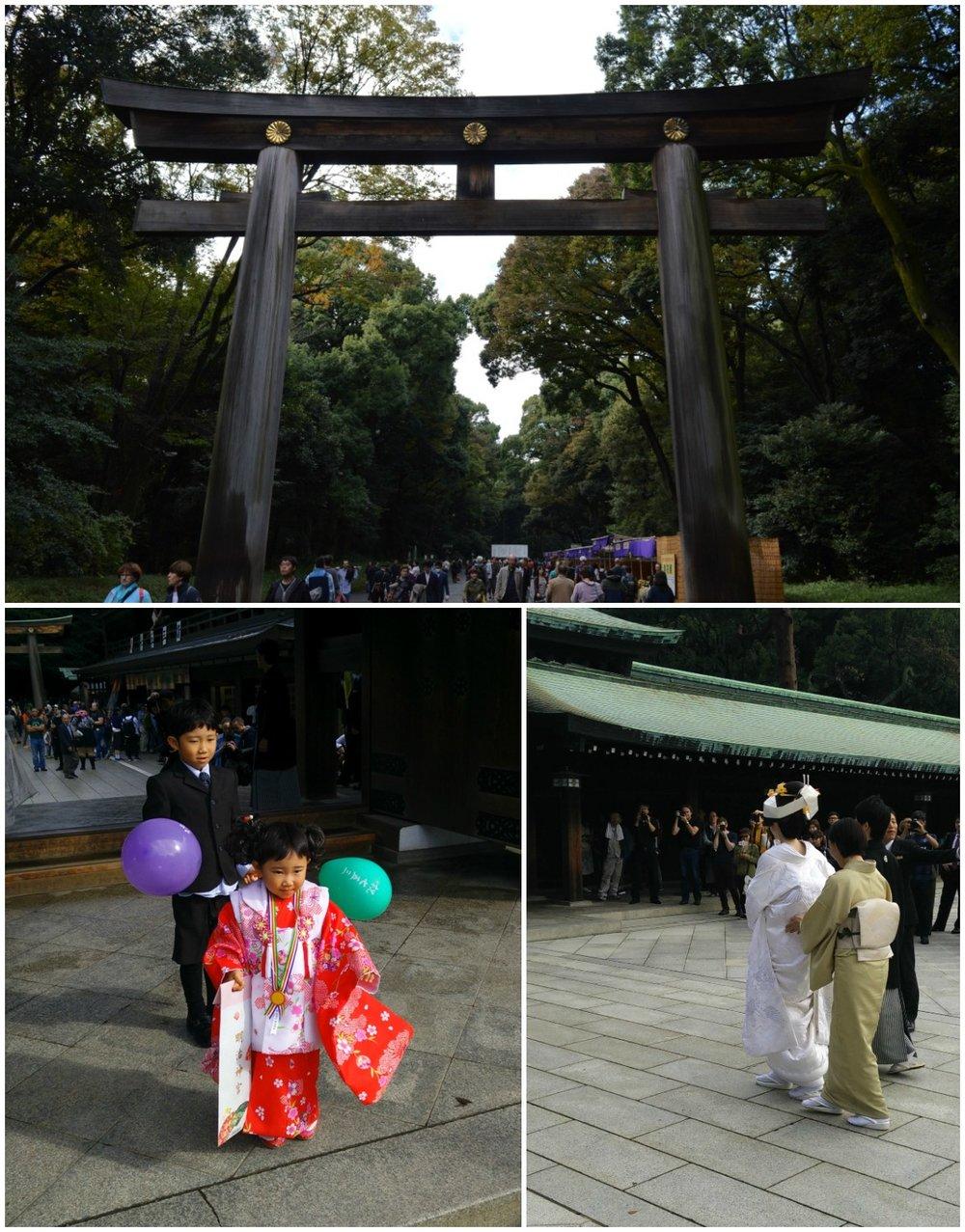 Πύλες torii σε μία κυριακάτικη βόλτα στο Τόκιο