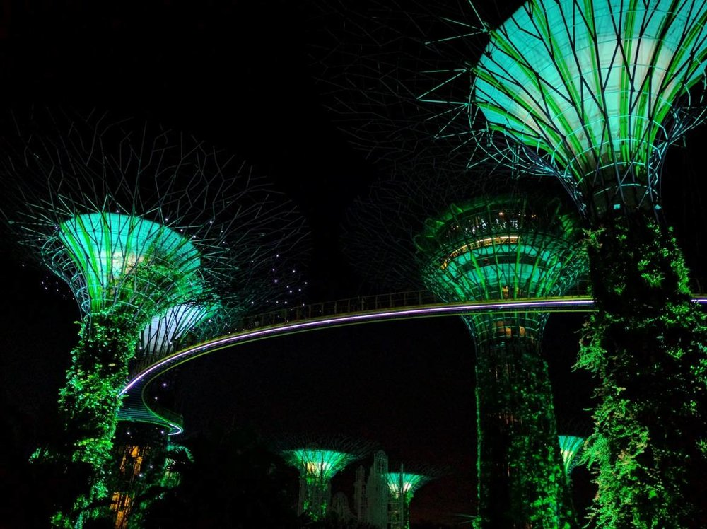 Futuristic scenery created by the Super Trees
