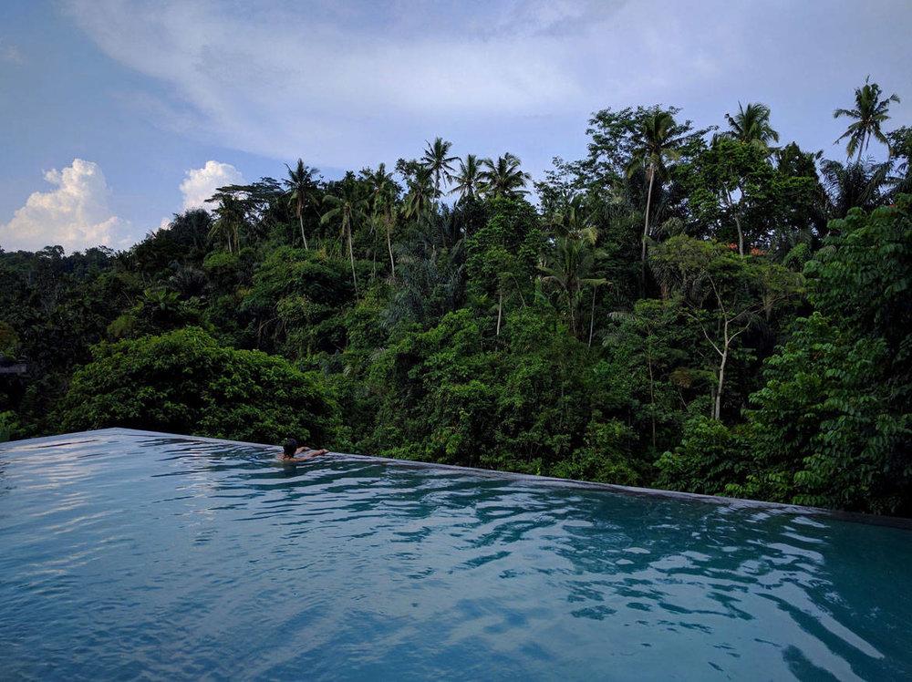 Jungle_Fish_Bali_07.jpg