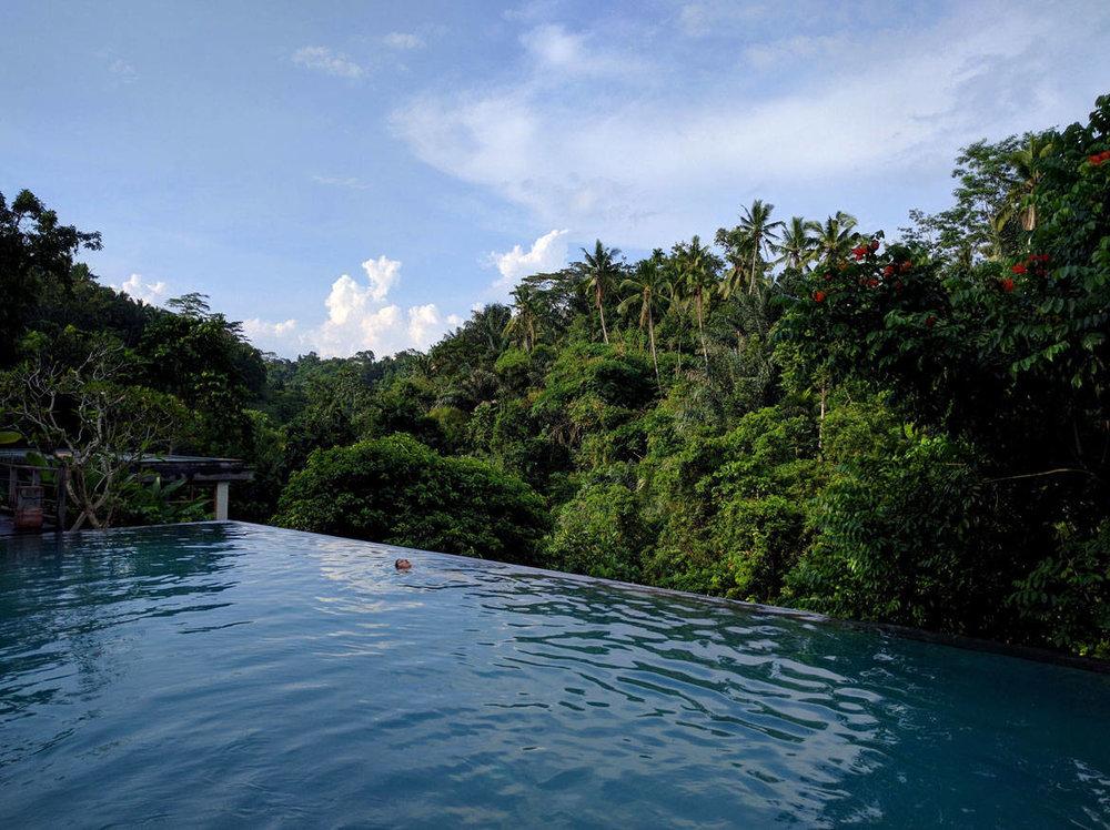 Κολυμπήστε στη ζούγκλα με λιγότερο από 10 ευρώ