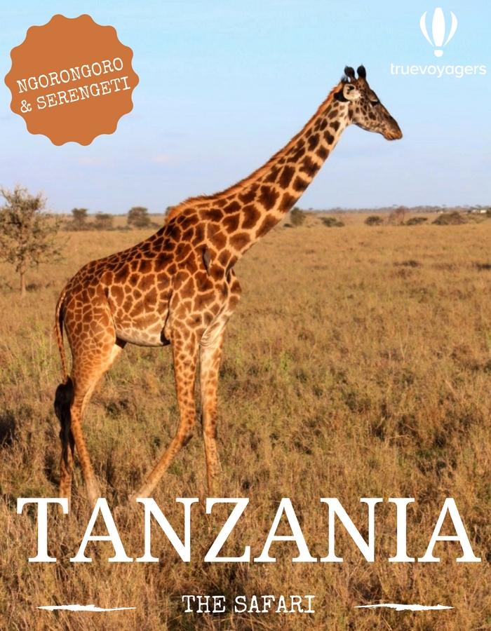 Σαφάρι στην Τανζανία από τους Truevoyagers