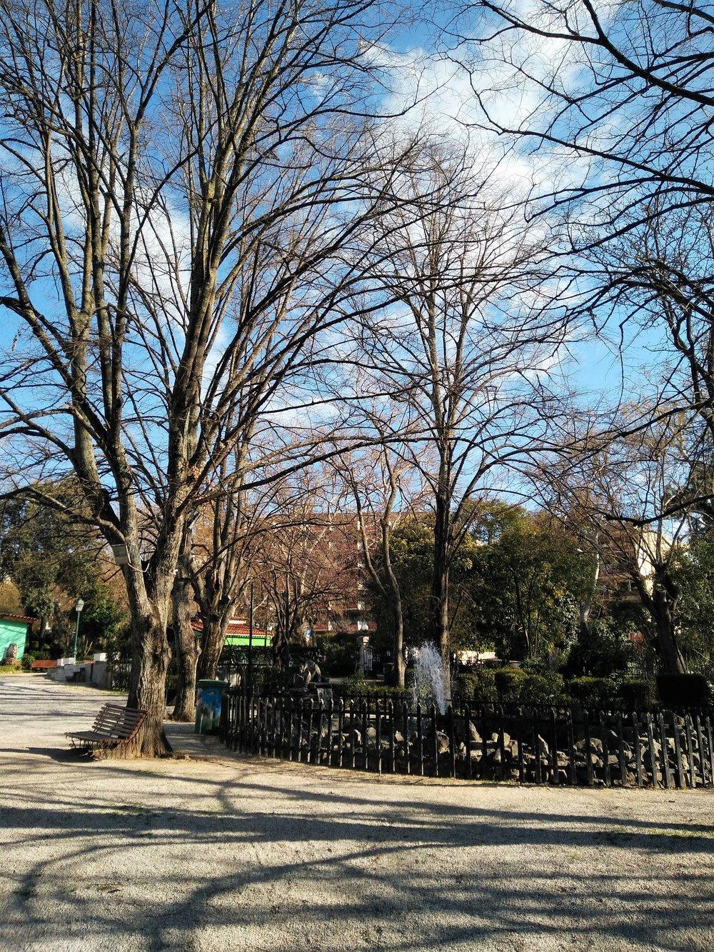 Inside the park of Kifisia