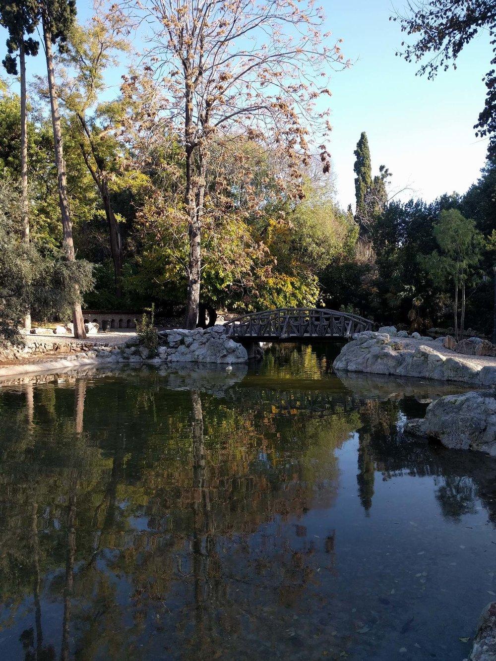 Το υγρό στοιχείο και οι όμορφες αντανακλάσεις του μέσα στο πάρκο.Πηγή: Truevoyagers.