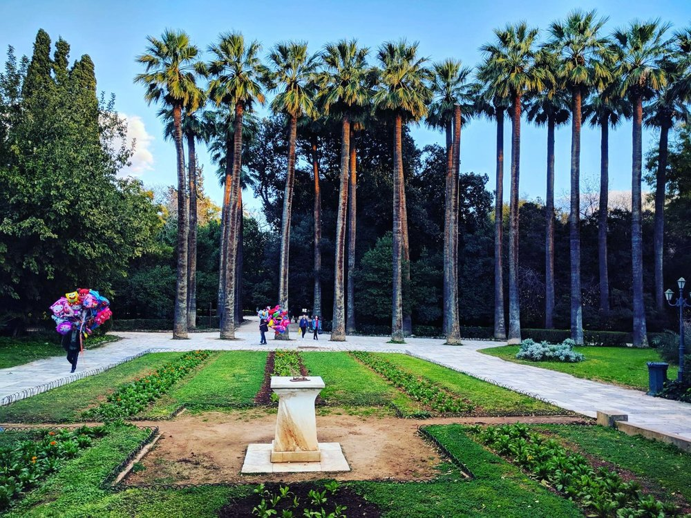 The palm-trees at the entrance of the National Garden may seem quite tropical for the mediterranean climate. Source: Truevoyagers