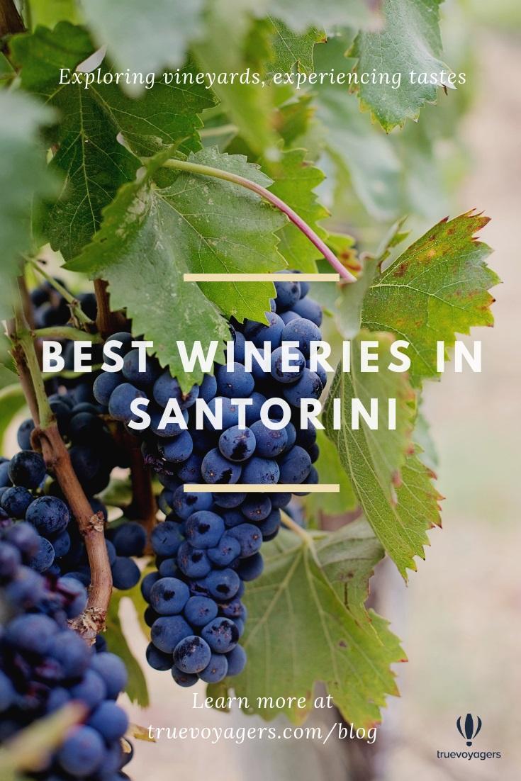 Best Wineries in Santorini by Truevoyagers