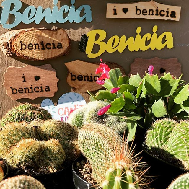 A little Benicia love and beauty on 1st street today. #beautifybenicia  #beniciacalifornia  #beniciaca