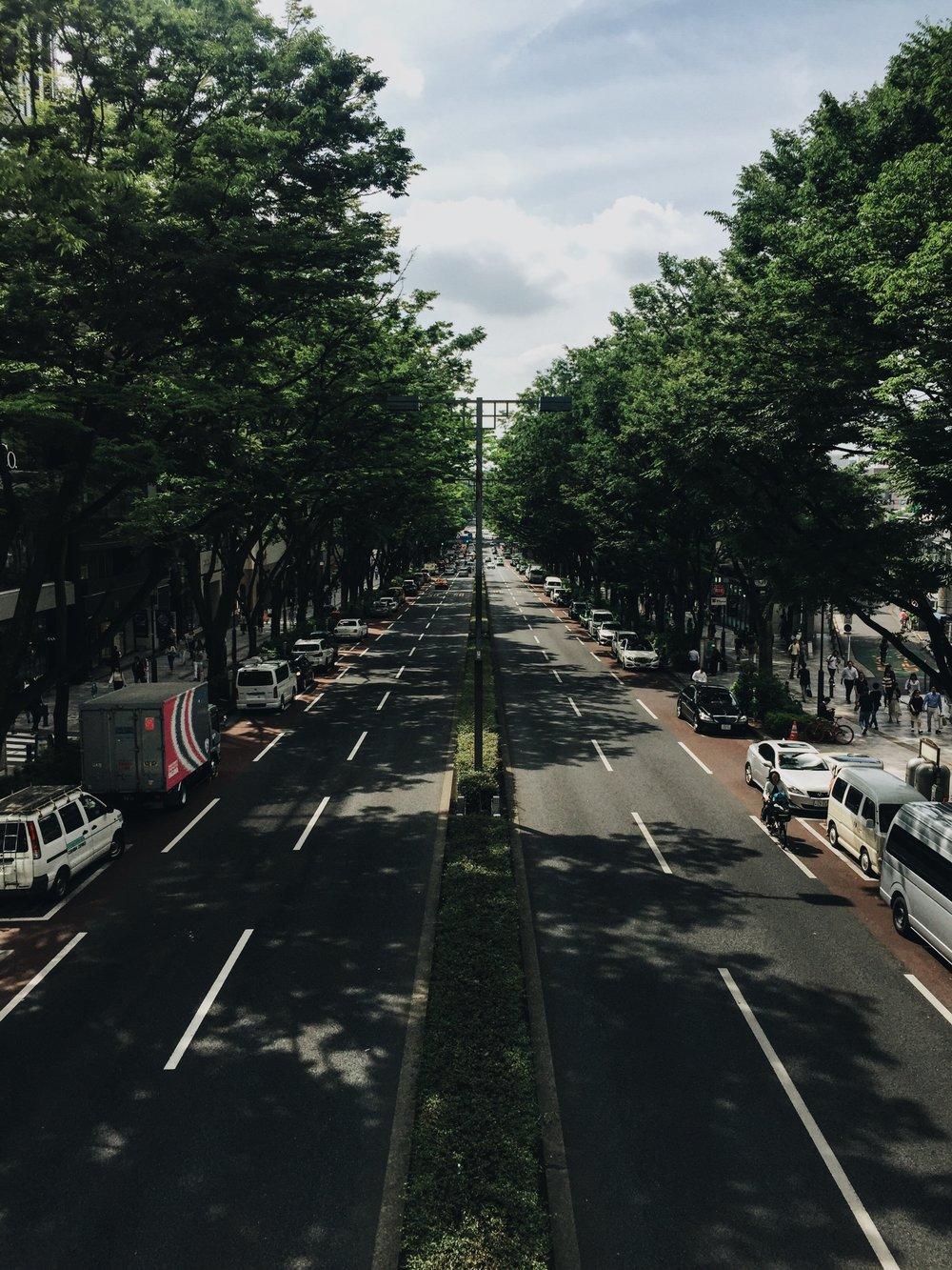 JapanStreet.JPG