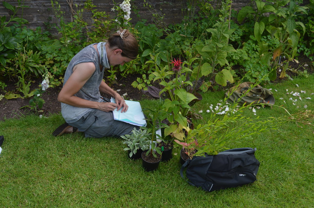 - A drawing exercise at Treberfydd Walled Garden in South Wales.