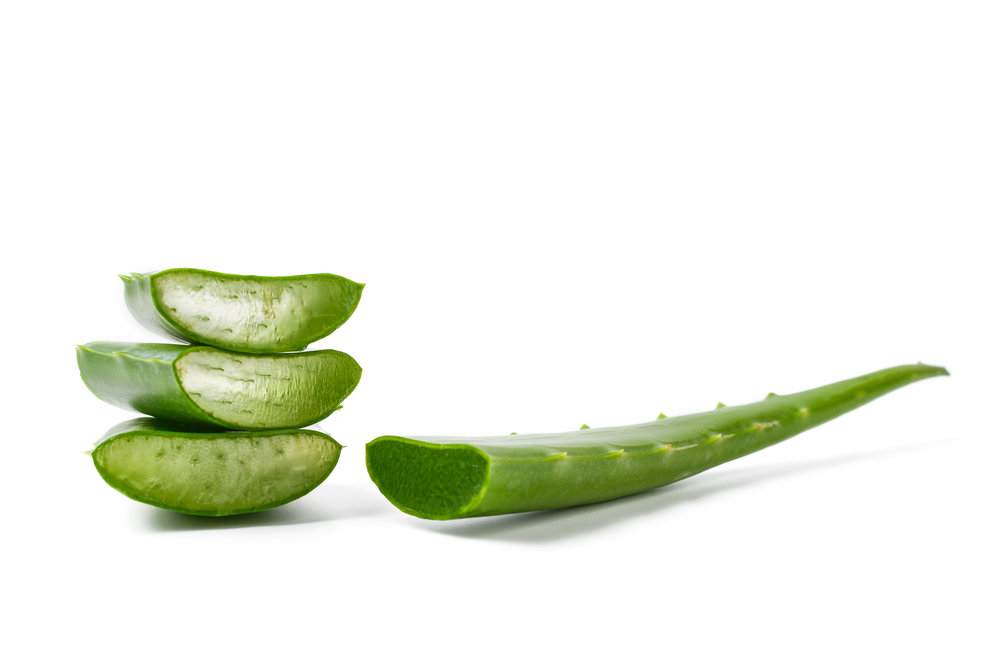 Aloe Vera - Aloe Vera has been used and revered for centuries for its calming and soothing properties.