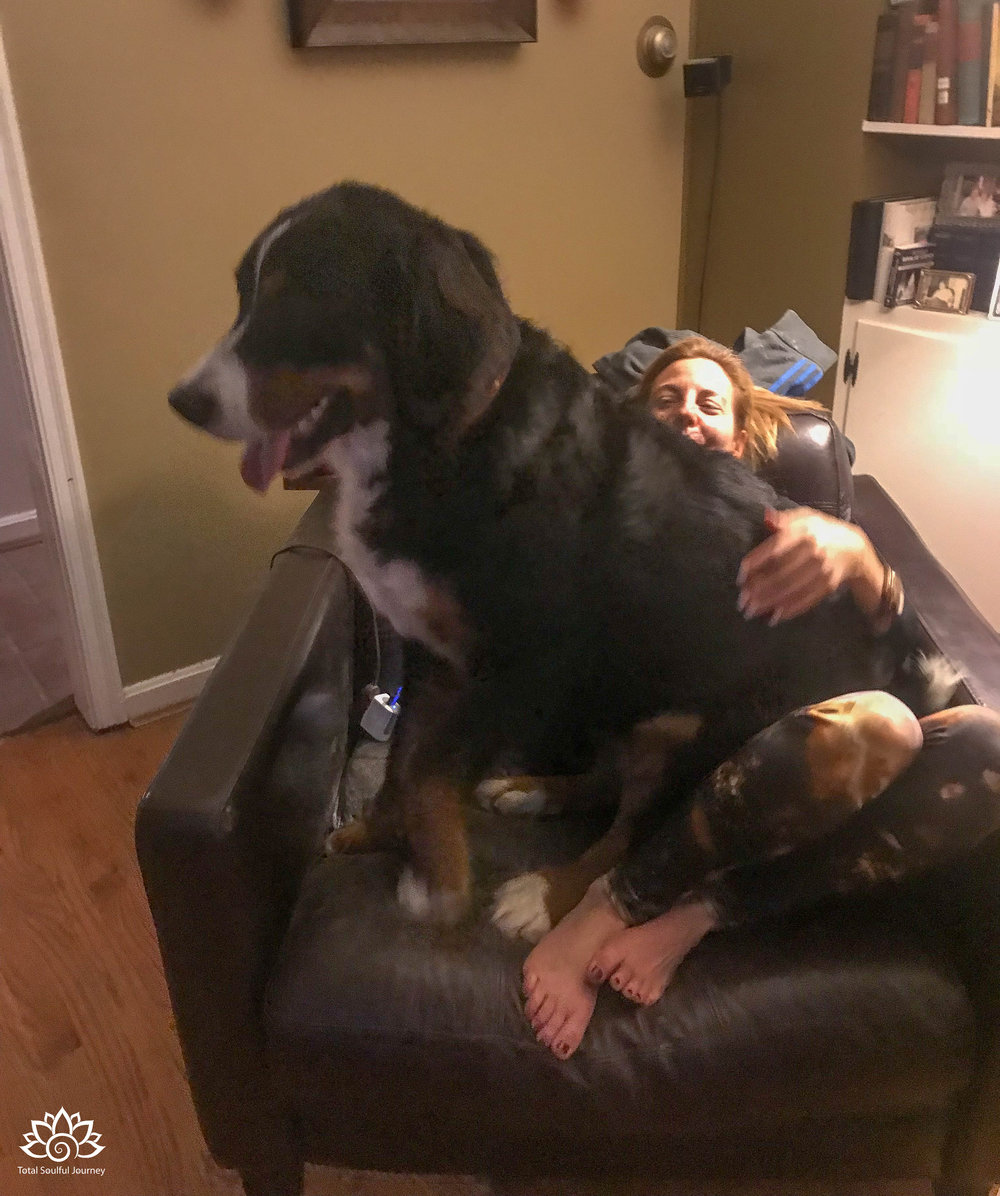 Tucker is not your ordinary lap dog...