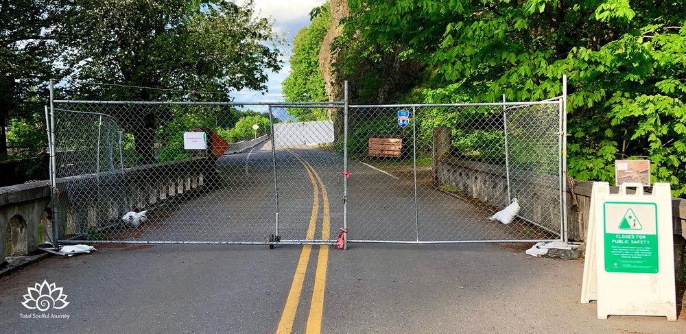 Sometimes Roadblocks are necessary for healing to take place. Be respectful and Patient knowing that healing brings new growth. This roadblock is on historic columbia River Highway in oregon at Multnomah Falls. Last summer a forest fire devastaTED THIS SCENIC AREA. MUCH OF THE HIGHWAY IS currently CLOSED TO PEOPLE WHILE NATURE HEALS herSELF.