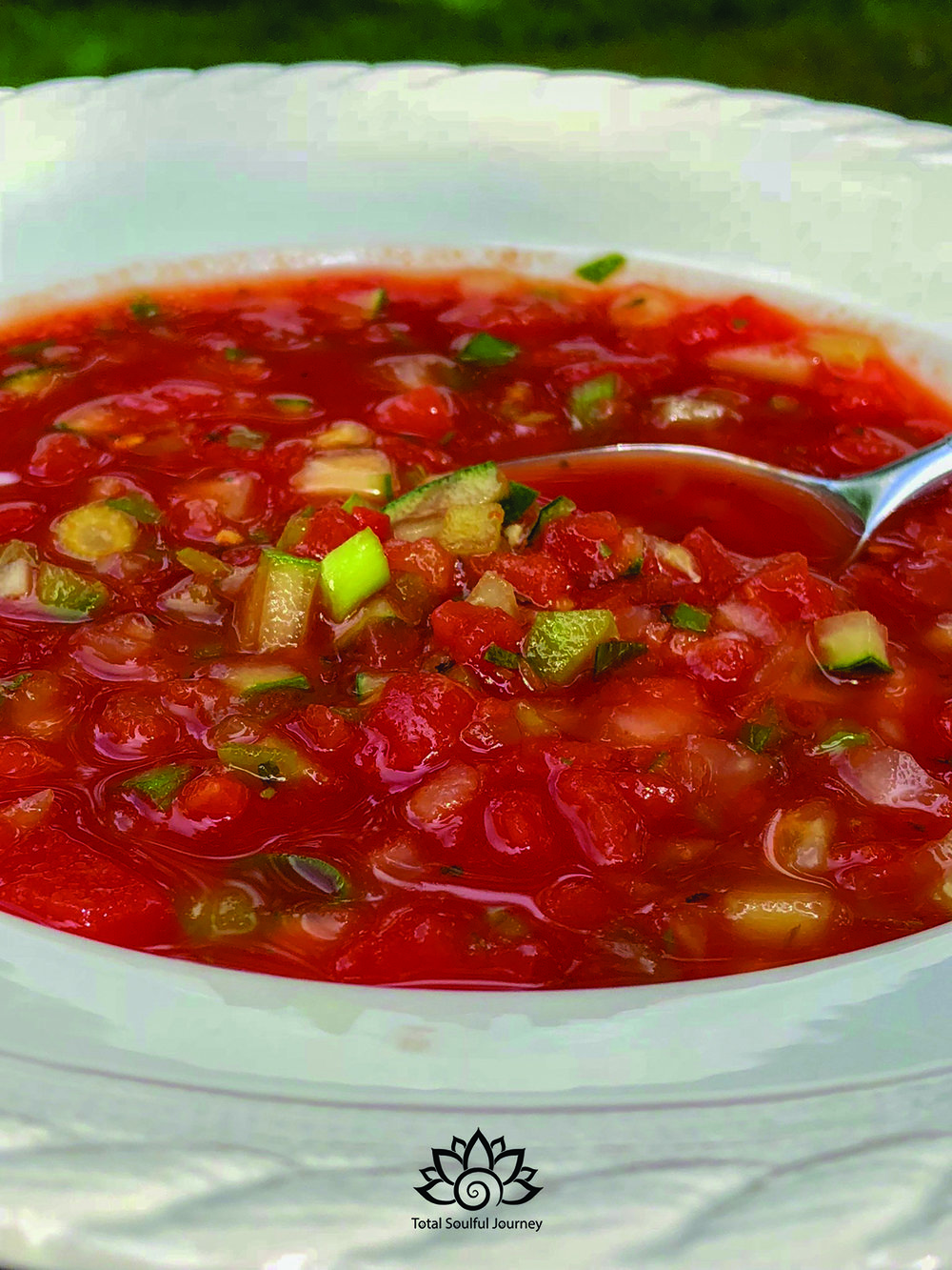 The Best Gazpacho - 4 cans of tomato juice, chilled1 sm sweet onion (finely minced)2 cans rotel, drained & chopped 1 green pepper, finely minced1 cucumber, finely minced2 green onions, chopped1/2 clove garlic, minced1 heaping tsp. of local honey2 T Red wine vinegarJuice of 1/2 lemonJuice of 1 lime1 tsp dried tarragon1 tsp dried basilDash of cuminDash of tabascoSalt & pepper to tasteCombine all ingredients & chill. *note: the green chilis in the rotel give this quite a spicy bite so feel free to use mild if you prefer non spicy.Submitted by Libby McAvoy