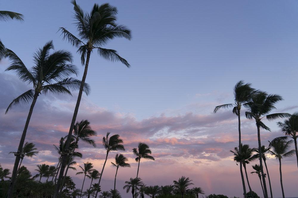 kauai-04v2.jpg