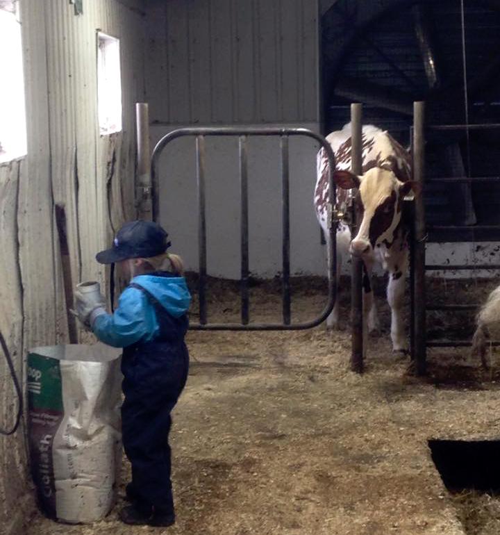 L'agriculture le meilleur du monde | vie à la ferme | Agrimom