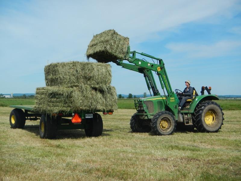 La vie à la ferme - Agrimom