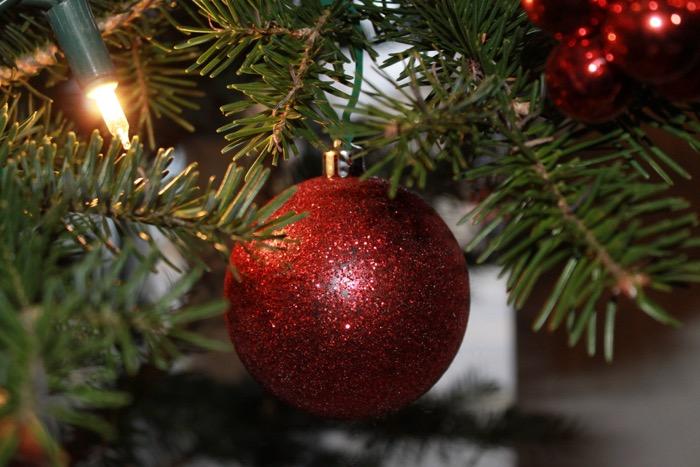 Voeux de Noel - Agrimom