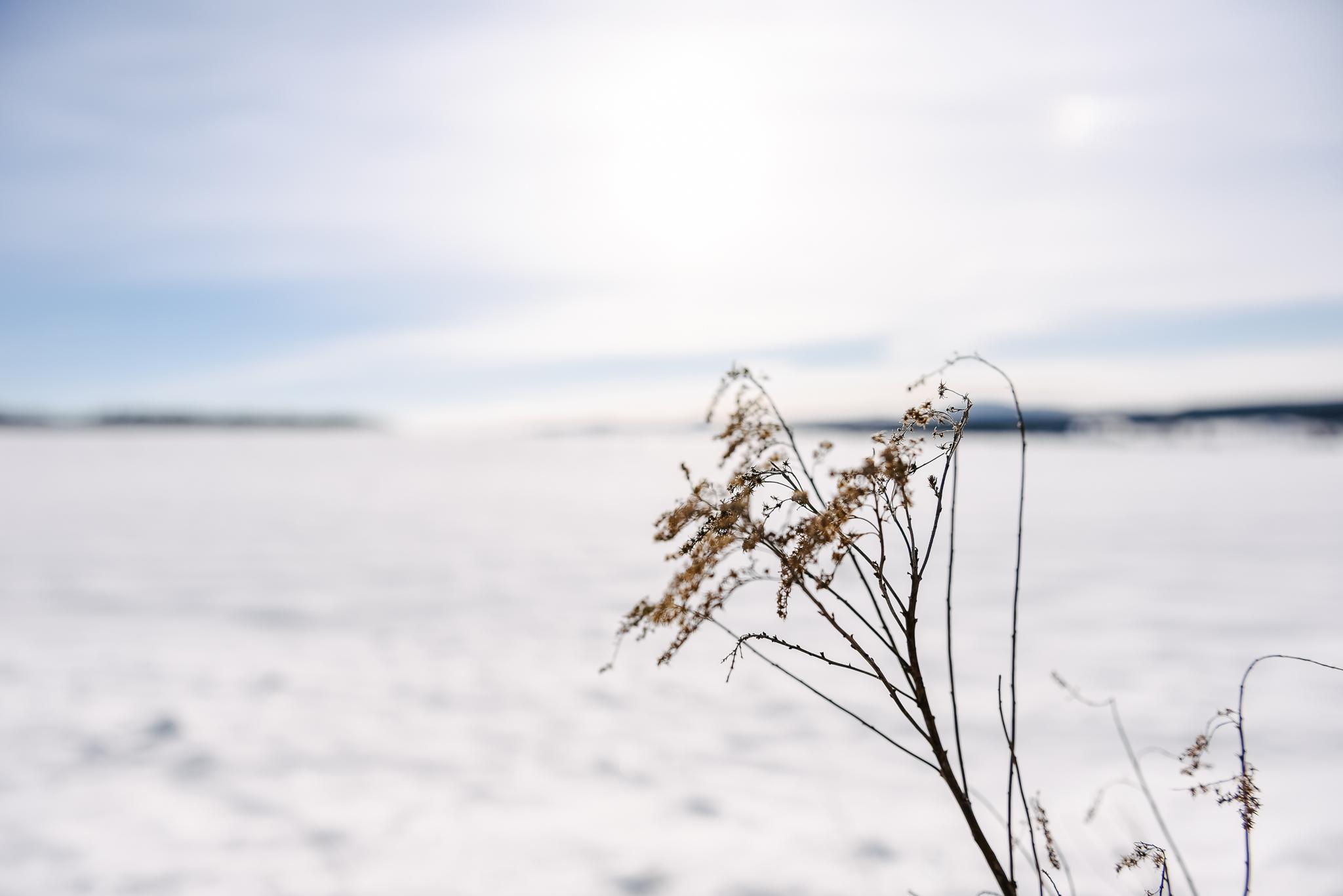 La plus douce des saisons - Agrimom