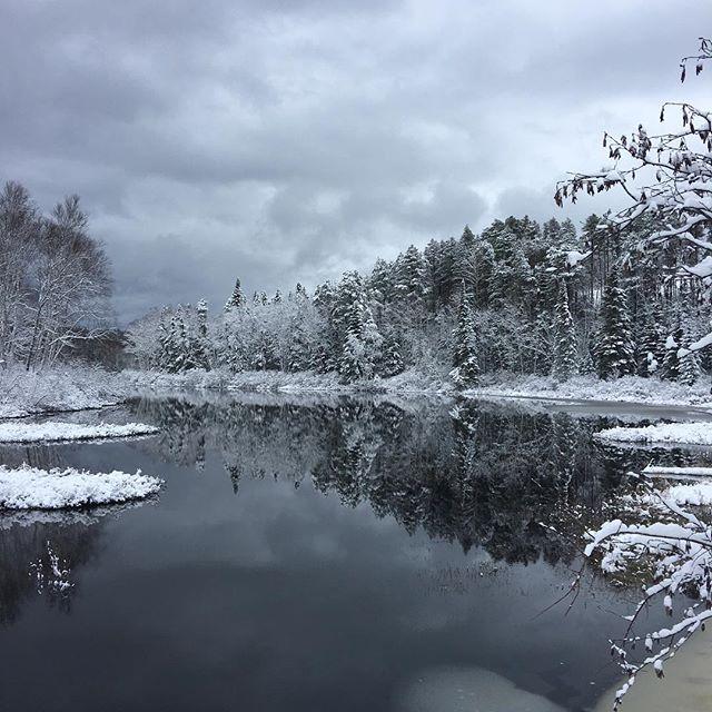 ❄️ #campagne #lanaudiere #hiver #novembre #quebecregion #stzenon #naturephotography #sansfiltre